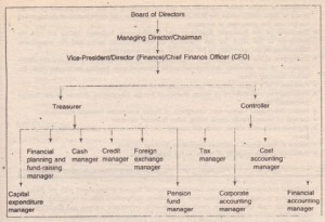 Organisation of Financial Management Function